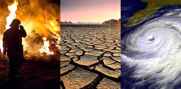 Luchan Contra El Cambio Climático