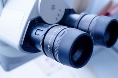 El Descubrimiento Del CSIC Material Que Inhibe el Coronavirus