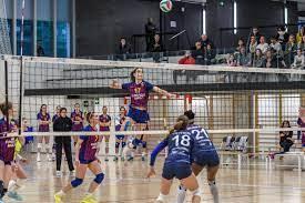 """Castelló da impulso al """"Ciutat"""" como sede internacional para el Mundial de Balonmano"""